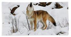 Winter Howl Bath Towel by Steve McKinzie