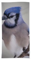 Winter Jay Hand Towel by Lana Trussell