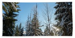 Winter Morning In The Forest Hand Towel