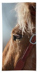 Winter Mustang Eye Hand Towel
