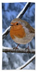 Winter Robin Hand Towel