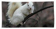 Winter Squirrel Bath Towel
