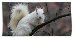 Winter Squirrel Hand Towel