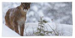 Winter Storm Hand Towel by Steve McKinzie
