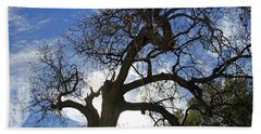 Hand Towel featuring the pyrography Winter Tree by Shoal Hollingsworth