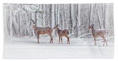 Winter Visits Hand Towel