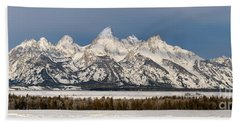 Winter's Majesty Hand Towel by Sandra Bronstein