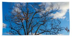 Winter's Tree Hand Towel by Derek Dean