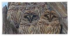Wintry Barred Owls   Hand Towel