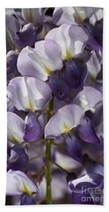 Wisteria In Spring Hand Towel