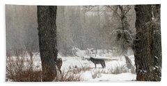 Wolf In The Forest Bath Towel