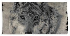 Bath Towel featuring the photograph Wolf Painted by Elaine Malott