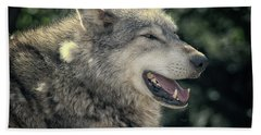 Wolf Rock Hand Towel