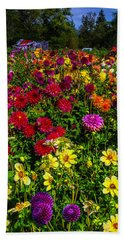Wonderful Dahlia Garden Hand Towel