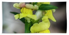 Wonderful Nature - Yellow Antirrhinum Bath Towel