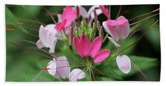 Hand Towel featuring the photograph Wonders Of Cleome by Deborah  Crew-Johnson