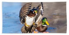 Wood Duck In Action Hand Towel