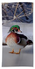 Wood Duck In Winter Snow And Ice, Montana, Usa Hand Towel