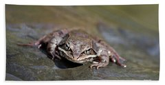 Bath Towel featuring the photograph Wood Frog Close Up by Christina Rollo