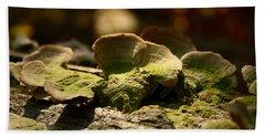 Wood Fungus Hand Towel