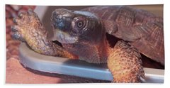 Bath Towel featuring the photograph Wood Turtle by Melinda Saminski
