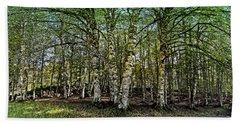 Woodland Hand Towel by Alessandro Della Pietra