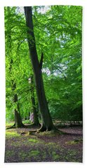 Hand Towel featuring the photograph Woodland Path by Anne Kotan