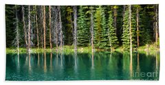 Woodland Reflections Hand Towel
