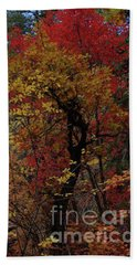 Woods In Oak Creek Canyon, Arizona Bath Towel