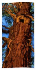 Wooly Bear Tree Hand Towel by Sharon Seaward