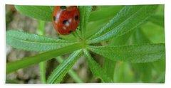World Of Ladybug 3 Hand Towel