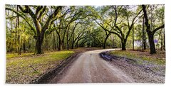 Bath Towel featuring the photograph Wormsloe Road by Anthony Baatz