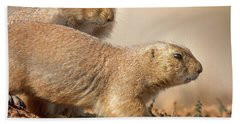 Bath Towel featuring the photograph Worried Prairie Dog by Robert Frederick
