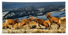 Wyoming Bighorn Brawl Bath Towel