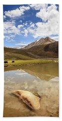 Yaks In Ladakh Hand Towel