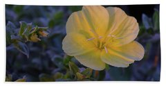 Hand Towel featuring the photograph Yellow Beach Evening Primrose by Marie Hicks