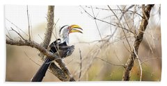 Yellow-billed Hornbill Sitting In A Tree.  Hand Towel