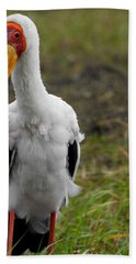 Hand Towel featuring the photograph Yellow-billed Stork by Betty-Anne McDonald