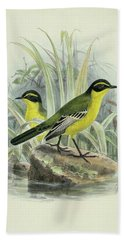 Yellow Browed Wagtail By Thorburn Hand Towel