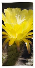Yellow Cactus Flower Hand Towel by Jim And Emily Bush