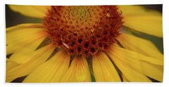 Yellow Cone Flower Bath Towel by John Roberts