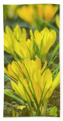 Yellow Crocuses Close Up Bath Towel