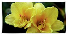 Yellow Daylilly 0204 H_2 Hand Towel
