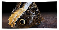 Yellow-edged Giant Owl Butterfly Hand Towel