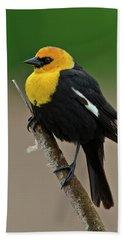 Yellow Headed Blackbird Hand Towel