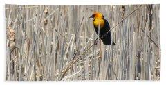 Yellow-headed Blackbird Bath Towel by Kathy M Krause