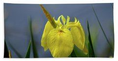 Yellow Iris Hand Towel by Jean Haynes