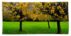 Yellow Leaves At Muckross Gardens Killarney Hand Towel