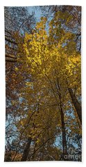 Yellow-leaves-maple-forest Bath Towel