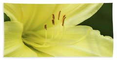 Yellow Lily Hand Towel